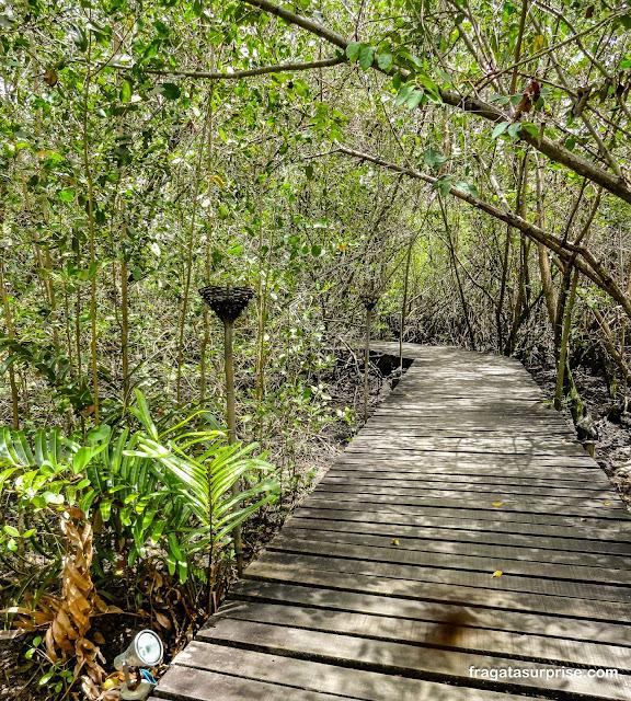 Passarela sobre o mangue que leva ao Restaurante Manguezal, na Praia do Forte, Bahia
