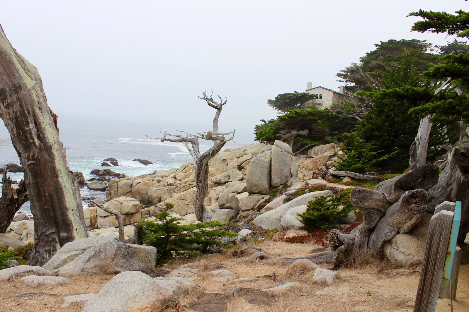 17 mile drive california usa