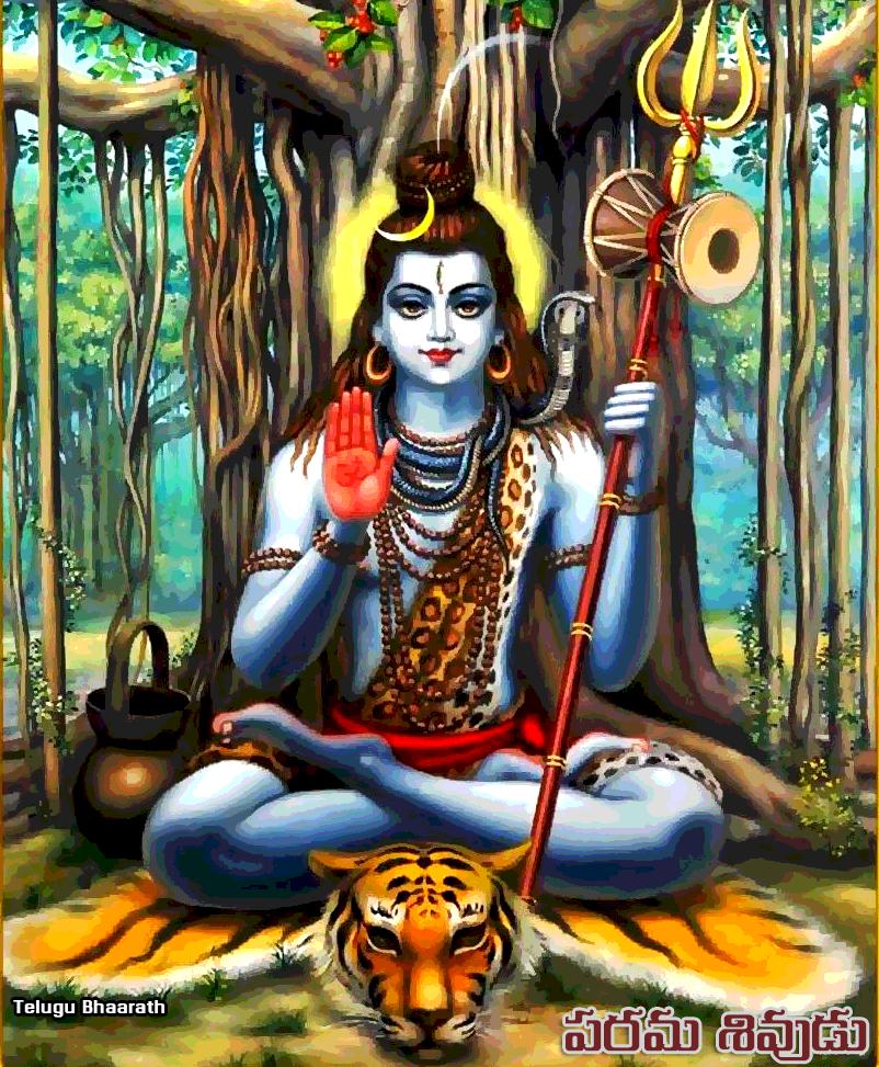 పరమ శివుడు పులి చర్మం - Shivudi puli charma dharanam