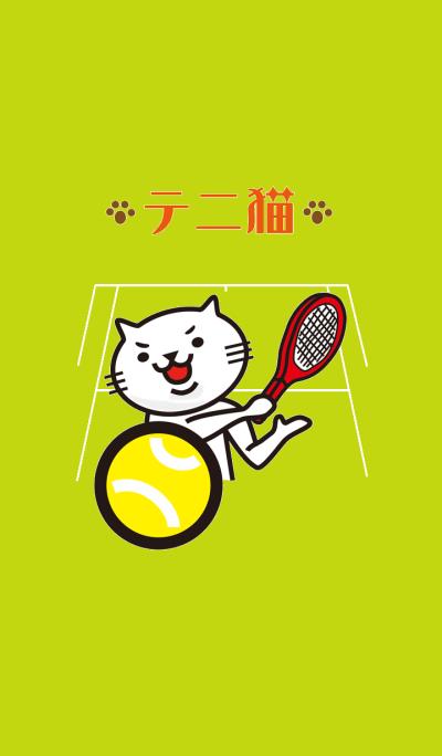 Very white cat to play tennis