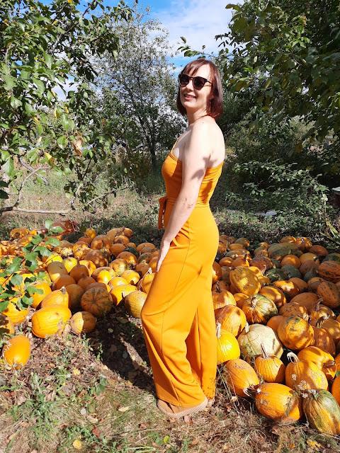 https://femmeluxe.co.uk/mustard-belted-one-shoulder-jumpsuit-evelyn