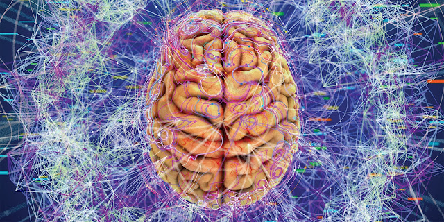 Your Mind Is Not Limited to Your Brain, Scientists Say Brain21