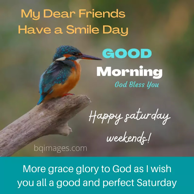happy Saturday good morning images