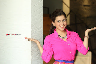 Actress Mannar Chopra in Pink Top and Blue Skirt at Rogue movie Interview  0214.JPG