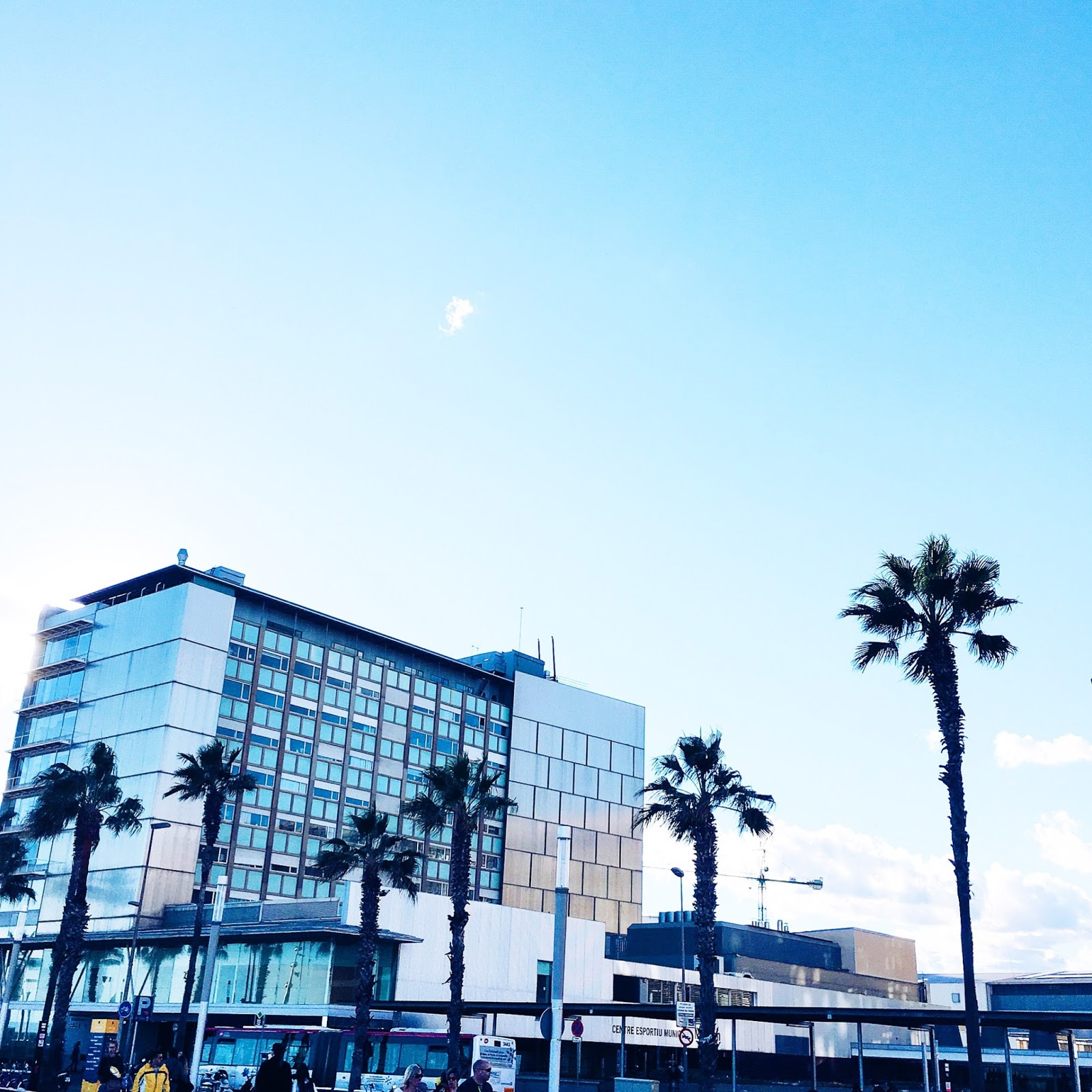 Barcelone palmiers ciel bleu