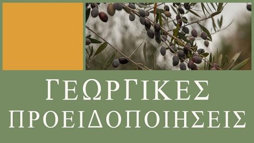 Περιφέρεια Σερρών: Ψεκασμοί για την αντιμετώπιση της καρπόκαψας σε καλλιέργειες μηλοειδών και καρυδιάς