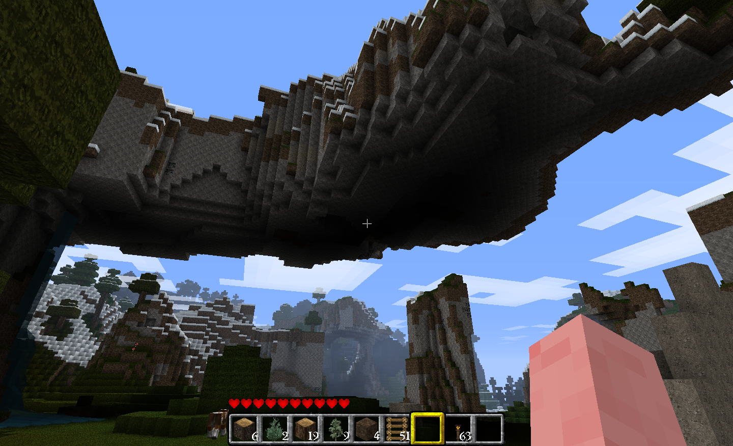 Minecraft Pig Cool Overhang Seed