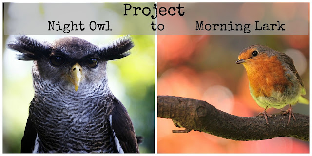 Night Owl to Morning Person