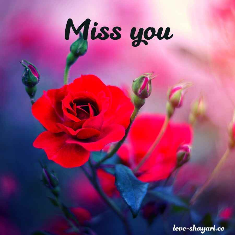 miss you images for him
