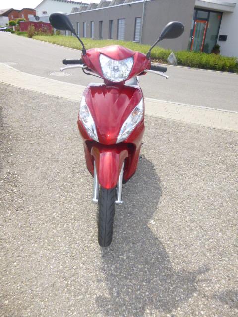 Roller Honda Vision 110 - von vorne