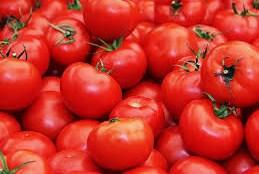 cara menghilangkan bekas jerawat dengan tomat