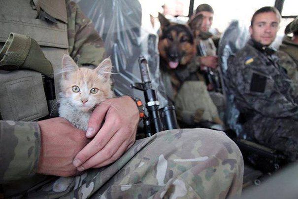 8. Soldier With A Cat