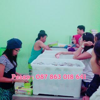 Oleh Oleh Khas Bali Online Shop
