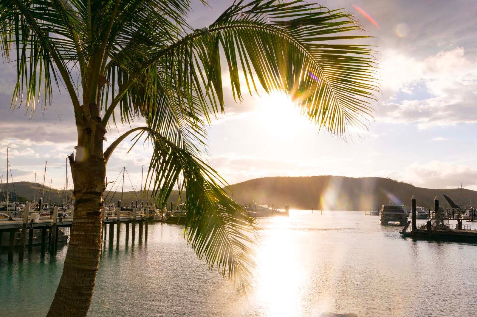 sunset over hamilton island marina