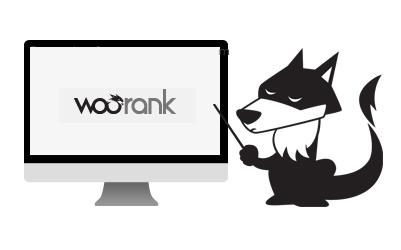 Otimize seu site com o Woorank