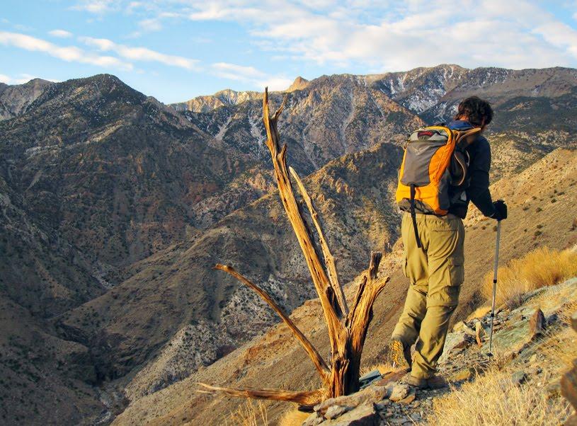 Shorty S To Telescope Peak Death Valley N P Cedar Amp Sand