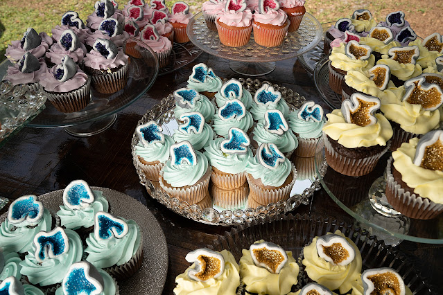 colorful cupcakes at Shadowood Farms wedding in Palm City Florida photo by Houghton Photography