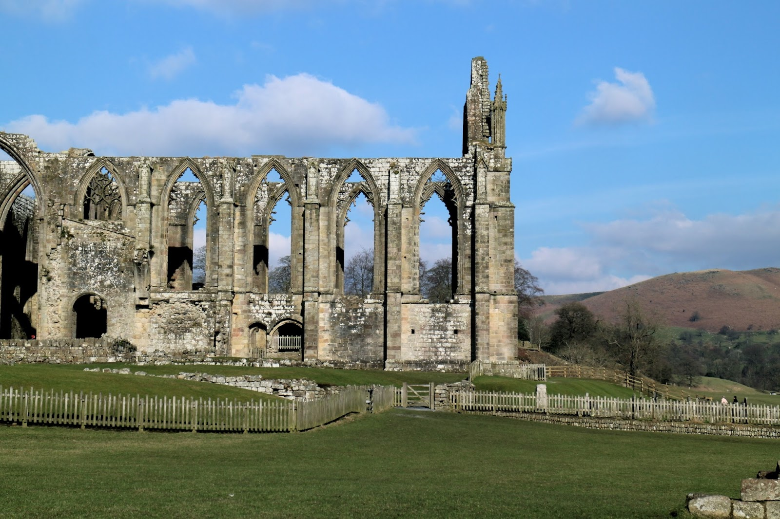 A view of the Bolton Priory and Ruins with blue skies in Spring