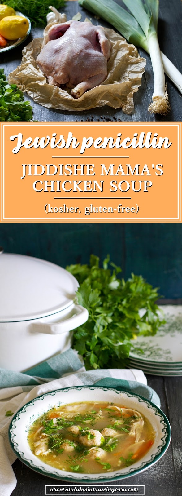 Jewish penicillin_Jewish chicken soup with matzo balls_Jiddishe mama's chicken soup_kosher_gluten-free_Under the Andalusian Sun_food blog_PIN ME