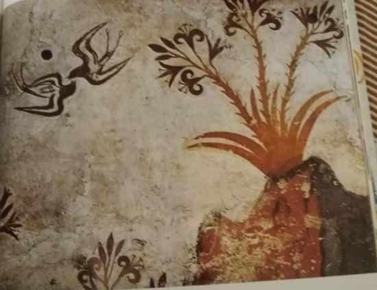 Akrotiri - Lilies