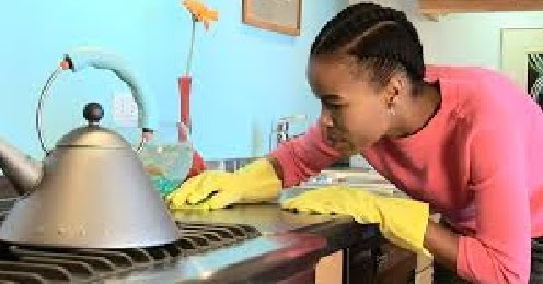 house%2Bcleaner1 Jamaican Job Application Form on blank generic, free generic, part time,