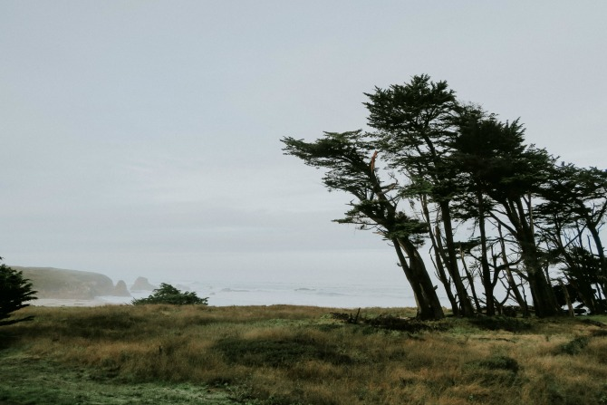 things to do along the northern california coast: go for a drive