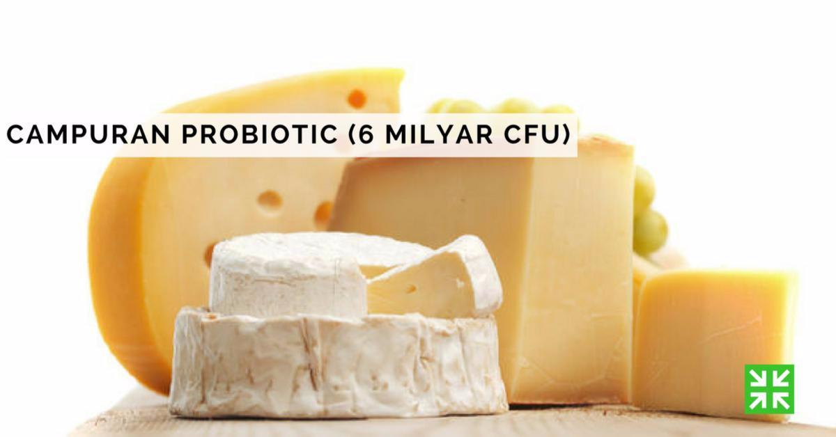 Bisnis Fkc Syariah - Probiotic (6 Milyar cfu)