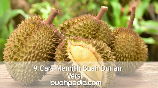9 Cara Mudah Memilih dan Membeli Buah Durian Versi Buahpedia.com