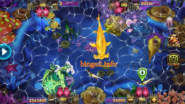 Chiến thuật chơi ria vô cùng hiệu quả khi bắn cá bingo 2