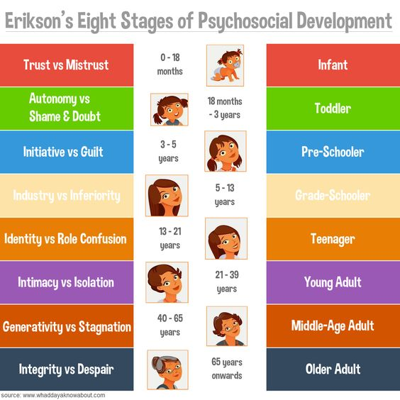 ericksons 8 stages