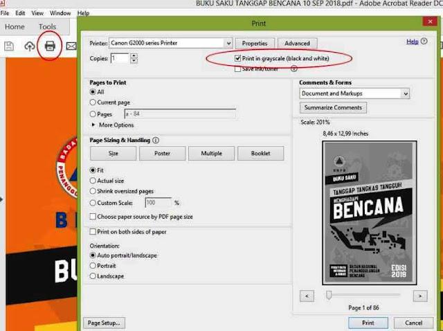 Grayscale Printing PDF