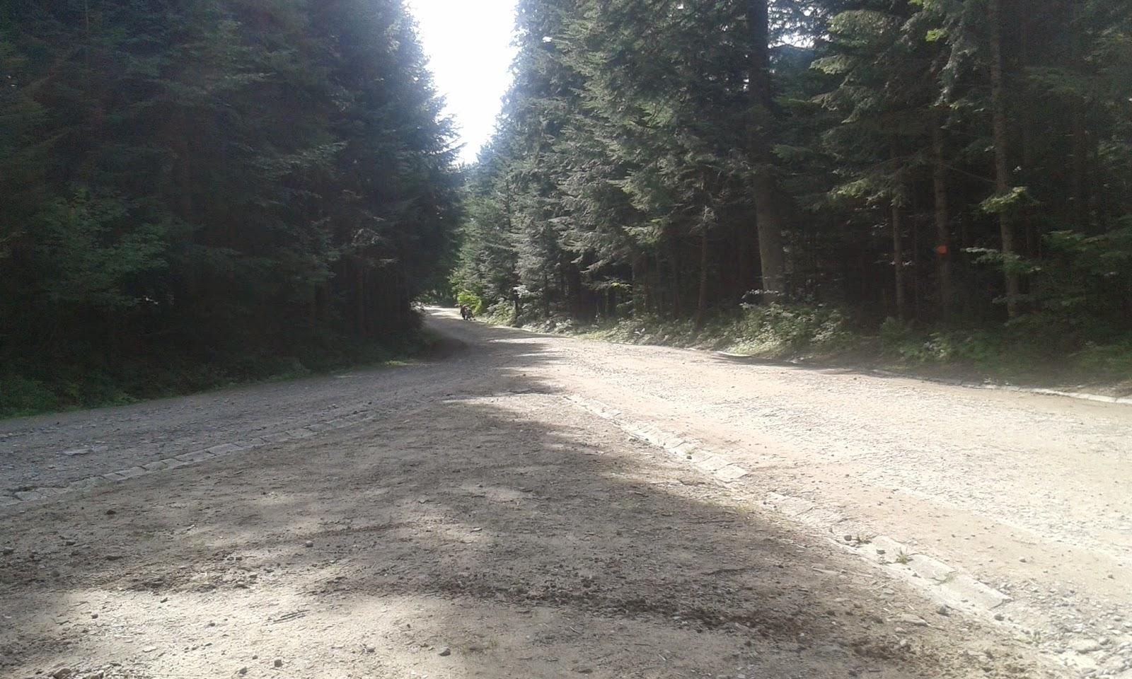 Łatwa trasa rowerowa w Szczawnicy
