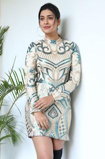 Actress Payal Rajput Stills at Disco Raja Movie Press Meet