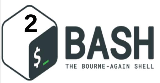 ما هي أسماء الملفات والأذونات في Bash Shell Script ؟