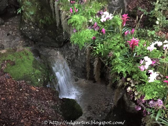 Blumen und Wasserfall