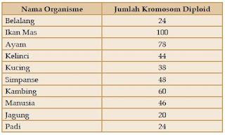 Tabel Kromosom
