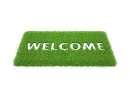 Handtex Home Artificial Grass Door Mat -Online Trade DD