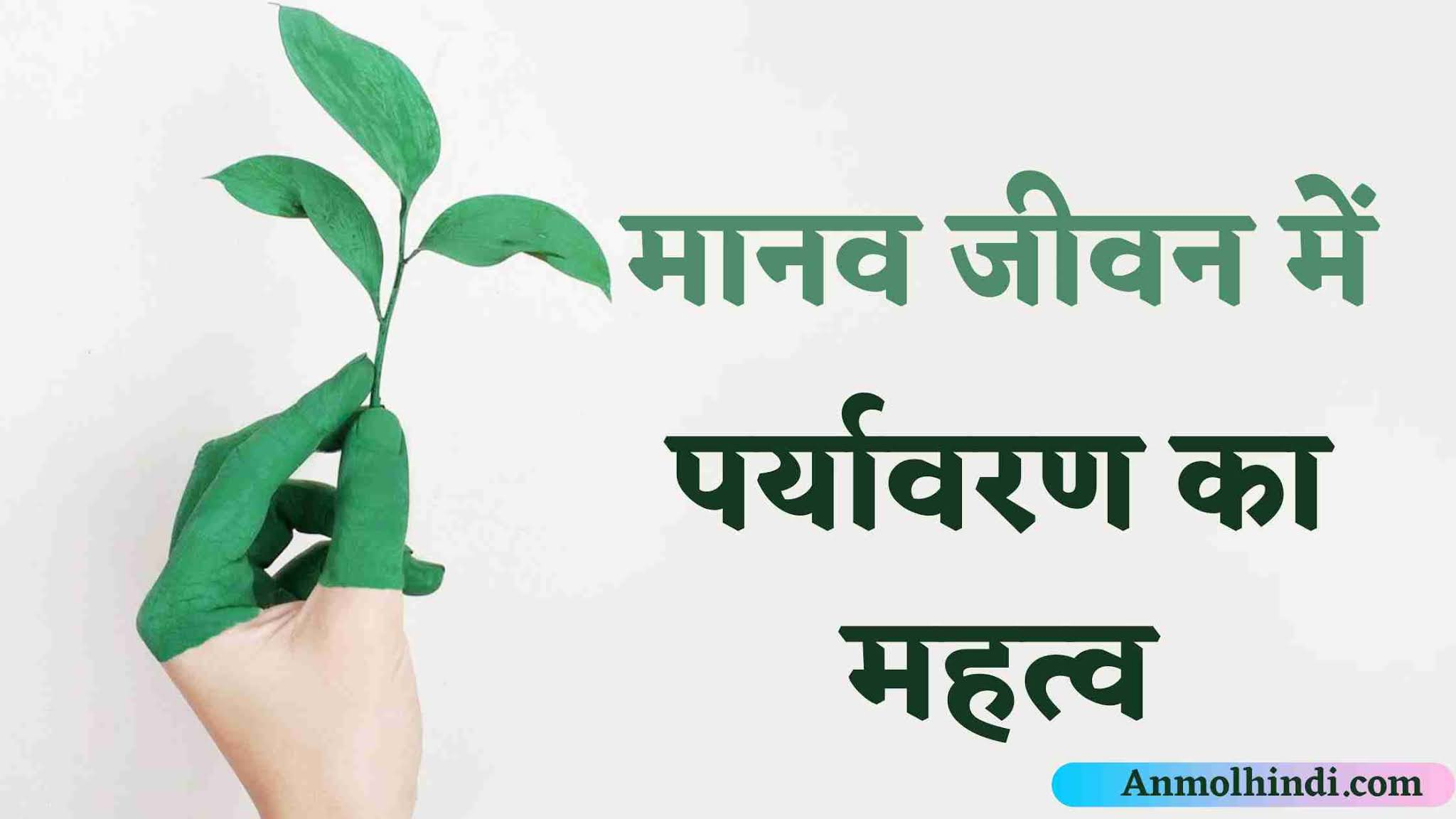 Importance Of Environment