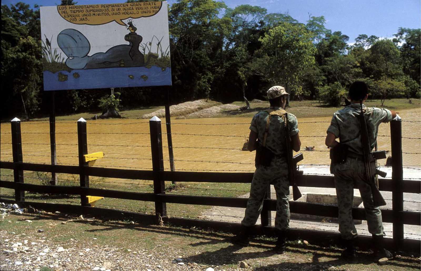 Soldados observan el estanque de hipopótamos en la hacienda.