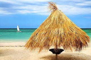 paisajes-paraísos-tropicales-en-fotografias fotografías-paisajes-tropicales