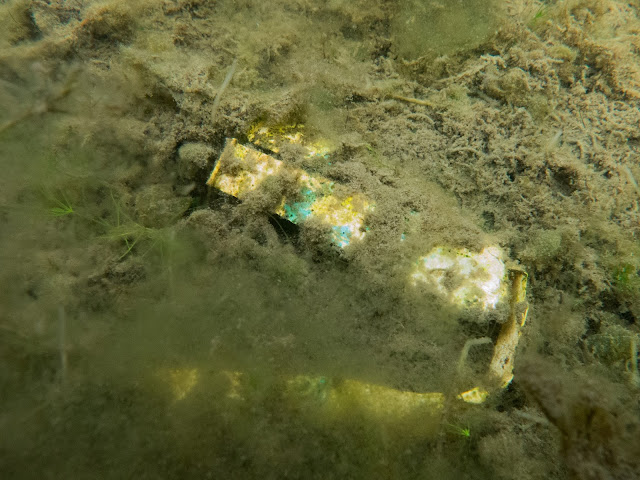 Hajonnut muovinen kertakäyttömuki meren pohjassa