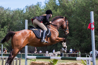 A bay horse with a rider jumping over a white and dark green jump at a competition.