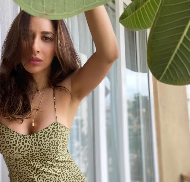 Sophie Choudry looks gorgeous in latest pictures