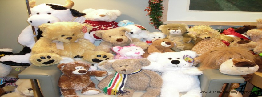 Happy Teddy Day Facebook Cover Photo 2013 Read Read Loved