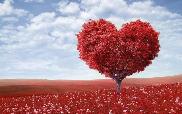Hati Kita Adalah Panduan Nyata Kita
