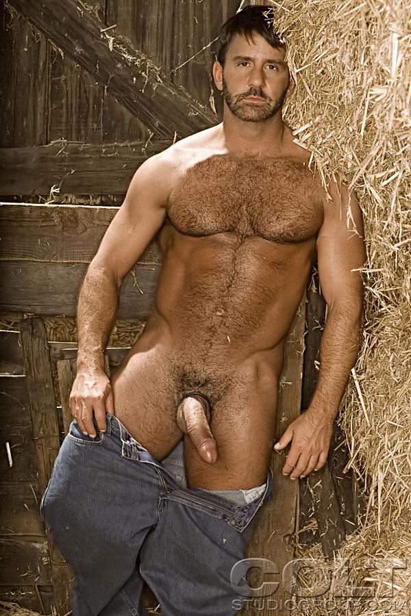 Gay Colt Men 33