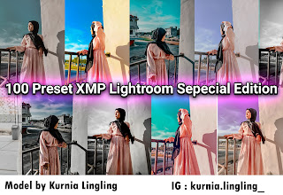 100 Preset XMP Lightroom Special Edition