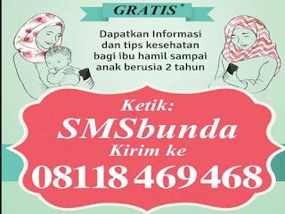 SMS Bunda : Tips Seputar Ibu Hamil Dan Menyusui Gratis