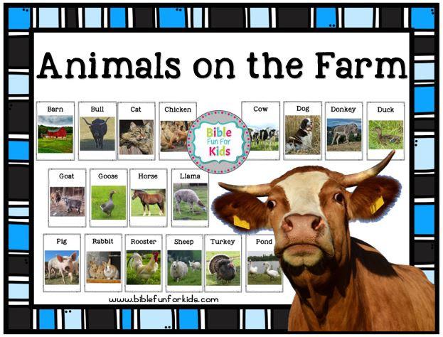 Bible Fun For Kids: God Makes the Farm Animals: Turkeys