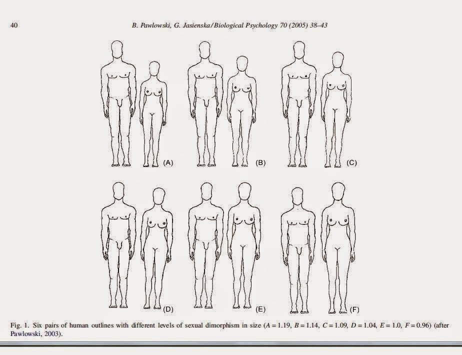 Why Do Women Like Tall Guys